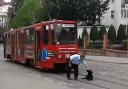 pas-tramvaj