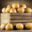 Uz pomoć samo jedne jabuke spriječite proklijavanje krompira
