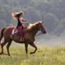 Jahanje konja proglašeno najopasnijom sportskom disciplinom