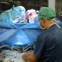 U BiH ove godine obavljeno samo šest transplantacija, ključno mijenjati zakon