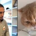 Proslavio se na Instagramu duetima s mačkama