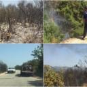 U šumi kod Neuma bjesni požar, Dodik ne želi dati saglasnost za pomoć helikoptera
