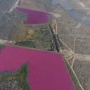 Jezera u Argentini misteriozno postala ružičasta!