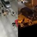 U brutalnoj tučnjavi navijača Crvene zvezde i Partizana u Zvorniku, dvojica teško povrijeđena