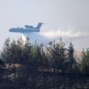 Pod kontrolom 88 od ukupno 98 šumskih požara u Turskoj