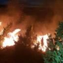 Tri požara bukte u šumi kod Konjica, mještani gase vatru