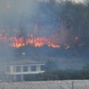 Uhapšen osumnjičeni za podmetanje požara u Tuskoj
