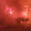 Vatrogasci objavili dramatičan snimak borbe s vatrom kod Trogira