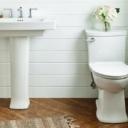 Zašto su WC šolje u toaletima skoro uvijek bijele boje?